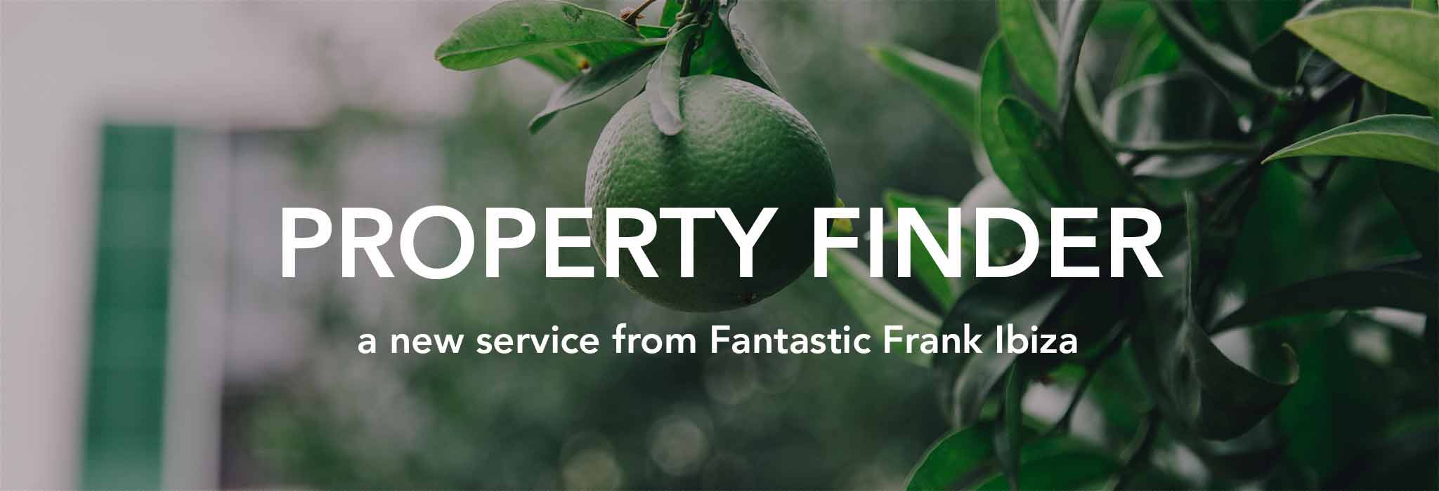 Fantastic Frank Ibiza - Personal property finder