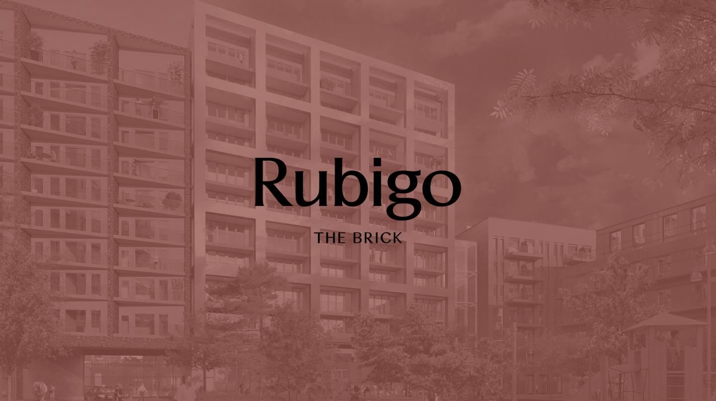 Rubigo - The Brick teaser Fantastic Frank